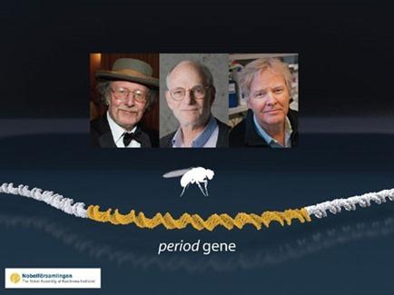 Nobel2017